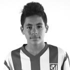 Luis Alberto Meseguer Villanueva 'Meseguer'